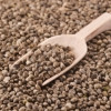 Hemp Seeds, Discover the Hidden Benefits of this Nutritional Powerhouse