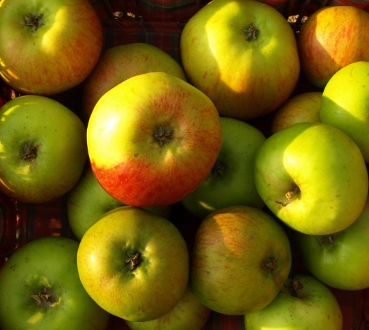 apples 530x474 The Health Benefits of Apple Juice