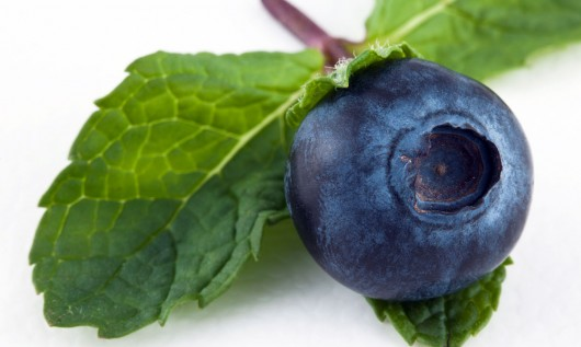 best blueberries for juice 530x317 Best Blueberries For Blueberry Juice And How To Choose Them