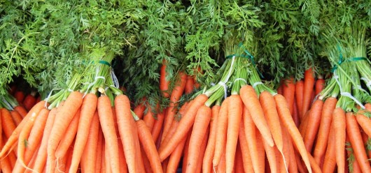best carrots for juice 530x248 Best Carrots For Carrot Juice And How To Choose Them