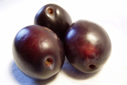 best plums for juice 530x353 Best Plums for Plum Juice and How to Choose Them