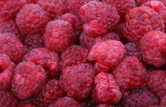 best raspberries for juice 530x344 Best Raspberries for Raspberry Juice And How to Choose Them