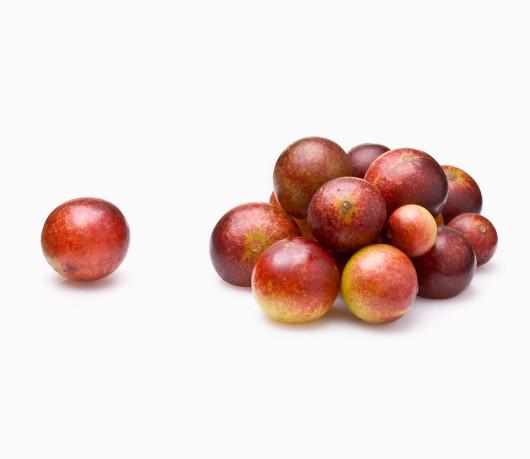 camu-camu-berry