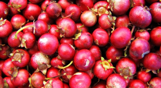 cranberries 530x289 Health Benefits of Cranberry Juice