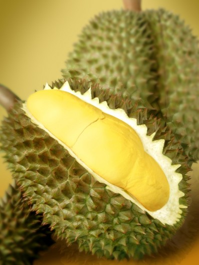 durian1 397x530 Which Fruit Has The Most Riboflavin (Vitamin B2)?