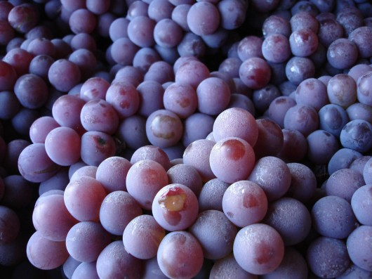 grapes2 530x397 4 Top Health Benefits of Grape Juice